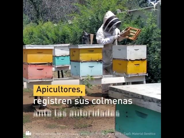 Buenas prácticas agrícolas y apícolas para la salud de los polinizadores