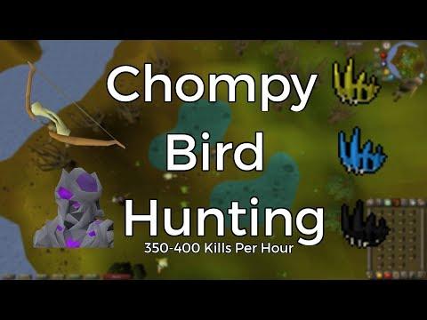 Totus Chompy Bird Hunting Guide 2018~