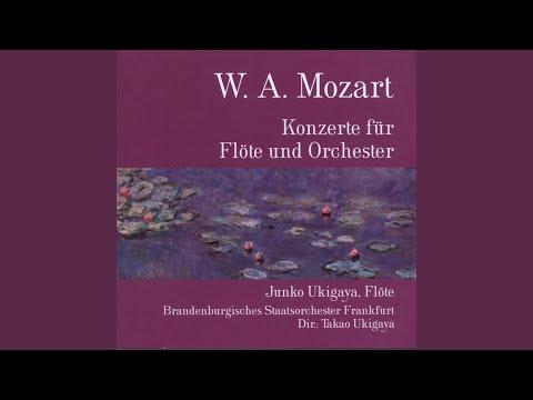 Konzert für Flöte und Orchester, D-Dur, KV 314: II. Adagio ma non troppo