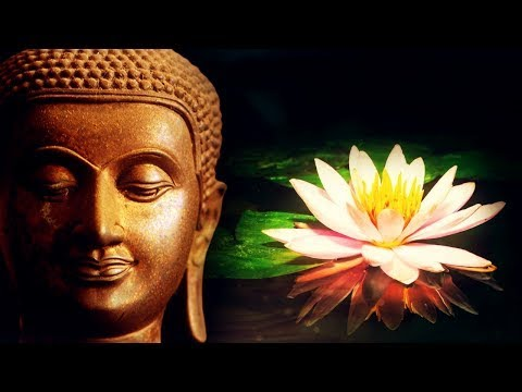 Música Reiki | Cuerpo, Mente y Alma | Energía de Sanación | Flor de Loto Zen  | 432 hz - YouTube