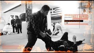 Hapkido Master Alex Kamanis by Sportschule Alex