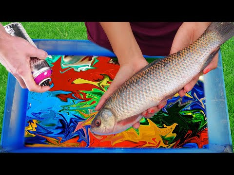 Experiment: Hydro Dipping A FISH?