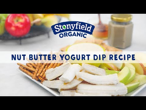Nut Butter Yogurt Dip Recipe Catherine McCord