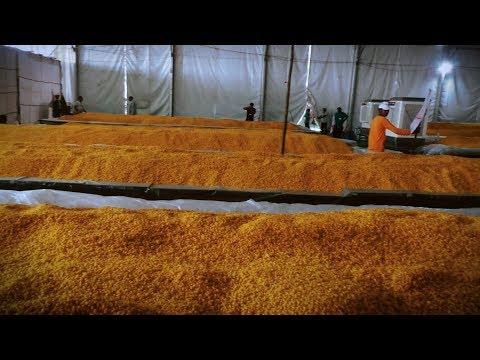 Video - 16 June 2019 | कबीर साहेब ६२२ वें प्रकट दिवस भंडारे की तैयारियों का जायजा | SA NEWS LIVE         https://youtu.be/Y7K9dyAEO5U
