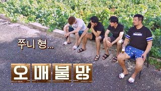 대문 밖에서 쭈니형(Park Joon hyung) 기다리는 아기 새들, 우리 형 언제 와..? 같이 걸을까 8회