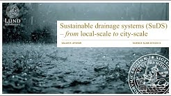 When it rains it pours. Sustainable drainage systems (SuDS) – from local-scale to city-scale