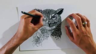 Speed Drawing - Owl/ Coruja (Tattoo)