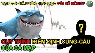 TÂM LÝ GIAO DỊCH P2 | Quy trình kiểm định cung - cầu của CÁ MẬP trên thị trường tài chính