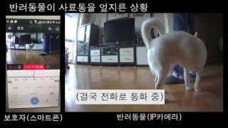 IP카메라 사용 중 오디오 문제
