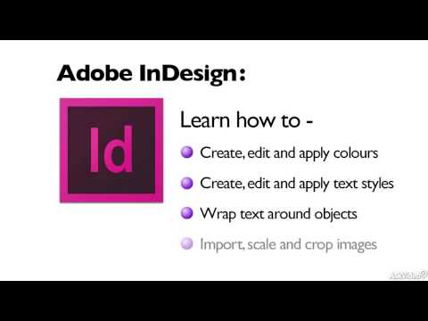 Graphic Design 301: Your Portfolio and Self Promotion - 13. What Do You Need to Learn