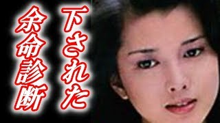 多岐川裕美さんに下されていた余命診断に衝撃を受けました をご覧くださ...