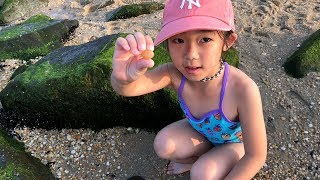 Queenie had a Fun Day on the Beach! Playing with Sand and other Kids Toys
