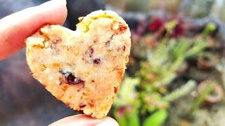蔓越莓奶酥饼 ❤ How to make Cranberries Cookies