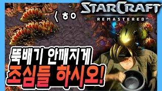 2018.7.22(일) Protoss 『리버로 끝까지 간다』 뚝배기 잘 챙기세요! 훅 갑니다.