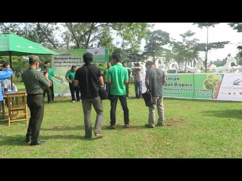 PERESMIAN LUBANG RESAPAN BIOPORI - CITRAGRAND CITY DUKUNG PROGRAM ECOCLTURE