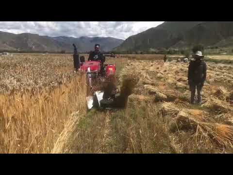 Four-wheel Tractor Reaper Binder, WhatsApp Number 0086 18888107326