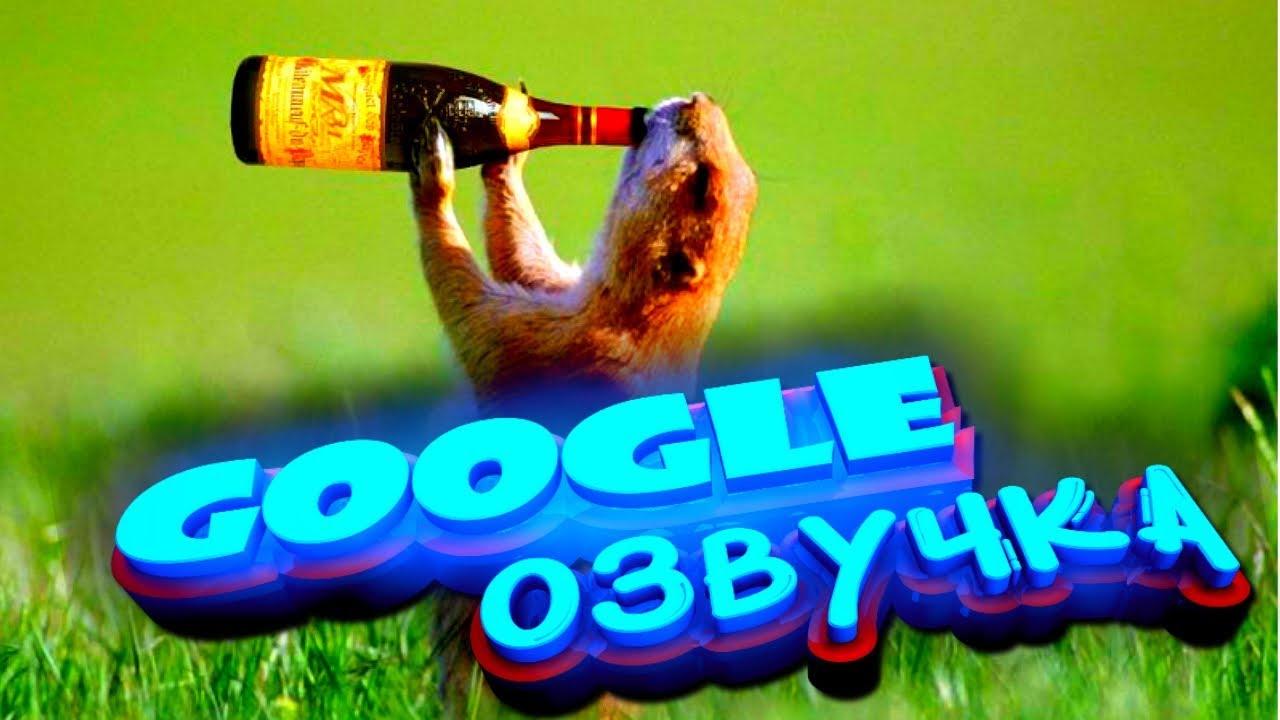 Смешная Google Озвучка. Я Плакал от Смеха. Видео Прикол, Коты Посылают Друг Друга, Роботы 2019 | Приколы Смотреть Яндекс