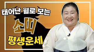 (용한점집)태어난 월생으로 보는 '소띠 평생의 운세' [1월생~12월생]