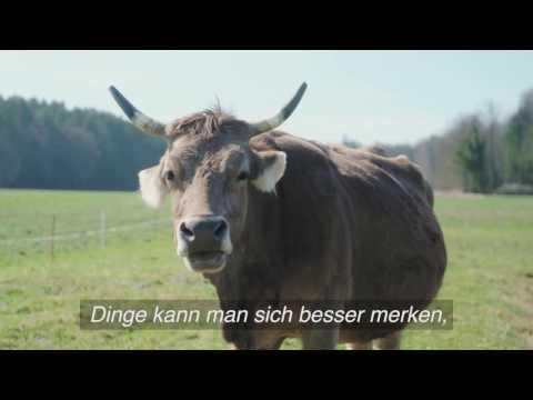 Bio Suisse Drei gewinnt Hypnose