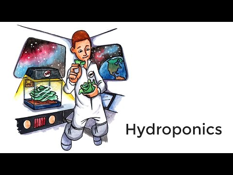 Hydroponics - A short introduction