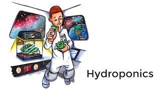 Hydroponics - A short introduction