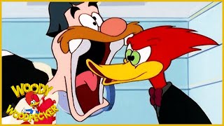 Woody Woodpecker Show | Like Father, Unlike Son | 1 Hour Compilation | Cartoons For Children