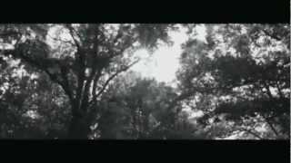 Child Of The Jackyl - Chthonian Descent VIDEO [Lyrics in descripcion]