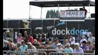 Sit Means Sit Dog Training At Stihl Dockdogs World Championships