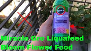 ✅  How To Use Miracle Gro Liquafeed Bloom Booster Flower Food Review
