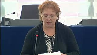 Renate Weber on EU Charter: standard settings for media freedom across the EU