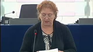 Renate Weber on EU Charter: standard settings for media freedom across the EU