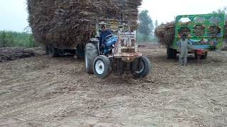 Ford tractor malik cane contractor Chiniot