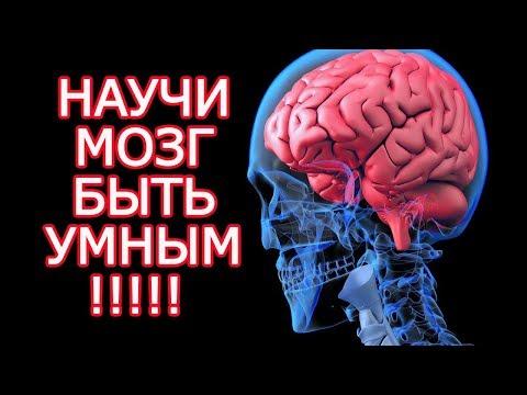 10 бесплатных способов стать умнее почти как Эйнштейн  - Задействуй свой мозг на 100