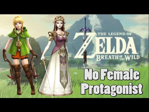 Link Confirmed To Be White and Male in Zelda, Breath of the Wild