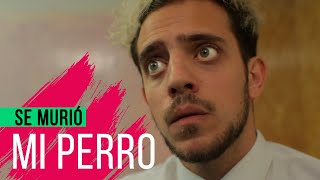 SE MURIÓ MI PERRO | Hecatombe!