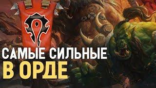 5 СИЛЬНЕЙШИХ ПЕРСОНАЖЕЙ ОРДЫ // World of Warcraft