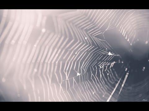 64.Почему трескается краска ,паутина - Смотреть видео без ограничений