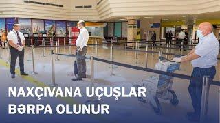AZAL Naxçıvana müntəzəm reysləri bərpa edir