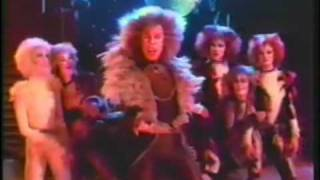 CATS - Rum Tum Tugger Music Video w/ Dodie Pettit....