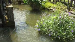 三芝鄉古庄村的根德水車