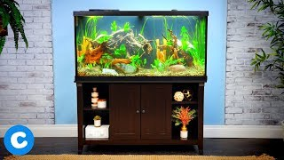Aqueon Supplies for Setting Up Your First Aquarium