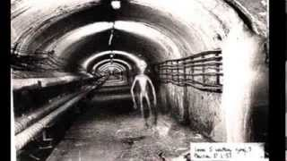 Dulce Base: Witness and Victim