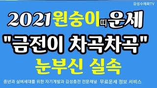 """""""눈부신 실속~금전이 차곡차곡""""원숭이띠 대박 운세"""