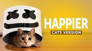 Cats & Dogs Sing Happier - Marshmello (Animals Cover)