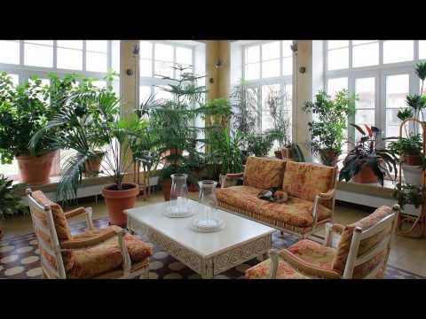 Как сделать зимний сад в частном загородном доме своими руками