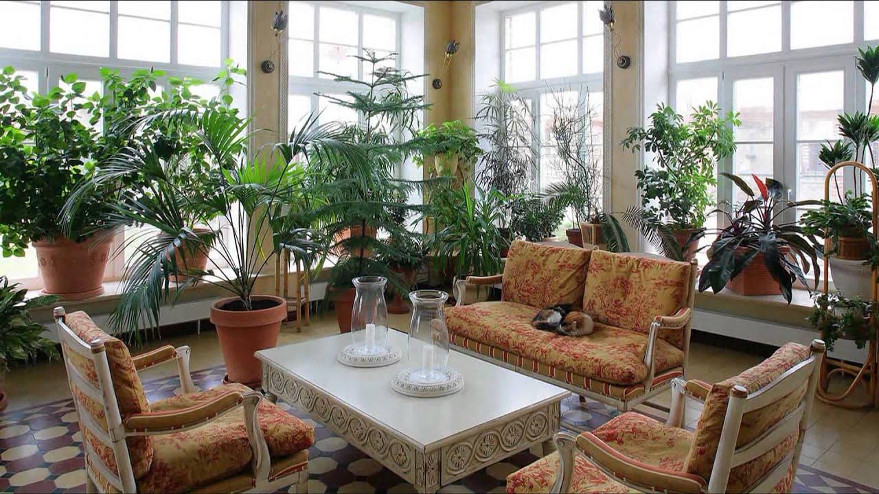 Зимний сад в доме своими руками видео