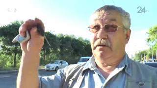 Страшная авария в Казани: пассажиру иномарки оторвало голову
