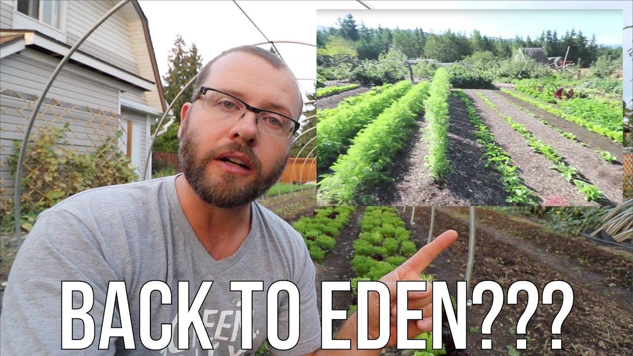 Why I don't do BACK TO EDEN Gardening