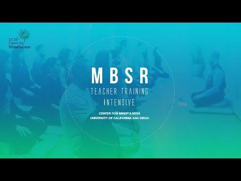 MBSR TTI: Mindfulness-Based Stress Reduction Teacher Training Intensive 2018