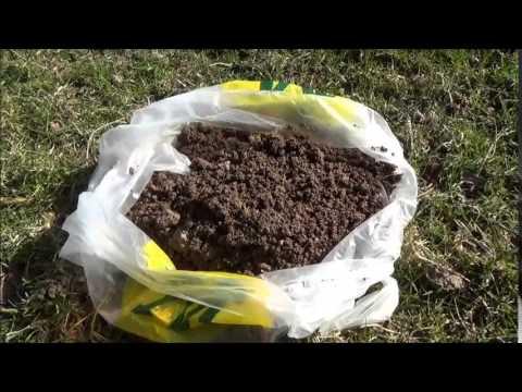 How to set a Duffus Mole Trap